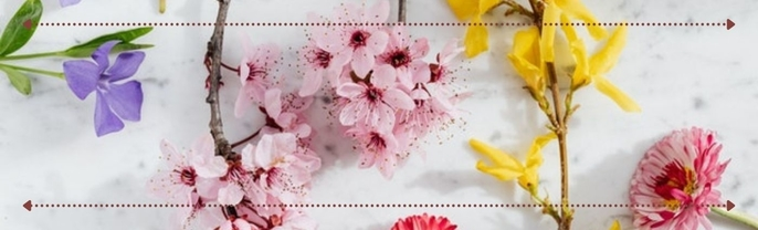 De ce iubim primăvara